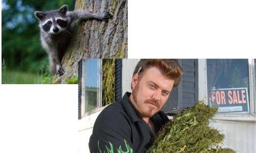 trailer park boys raccoon
